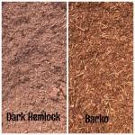 Cascade 6 bark